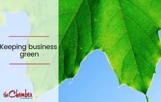 Environmental green leaf